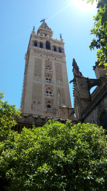 La Giralda tower of the catedral